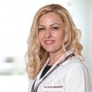 Dr. Öğr. Üyesi Elif Berber Menekşe